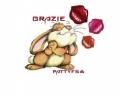 frencyc72 avatar